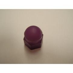 acorn-nut-purple