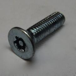 machine screw 10-32 flat head TORX tamper proof black